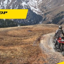 Gamma completa DUNLOP moto & scooter 2020